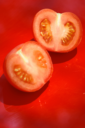 Close up of fresh picked tomato photographed in daylight conditions
