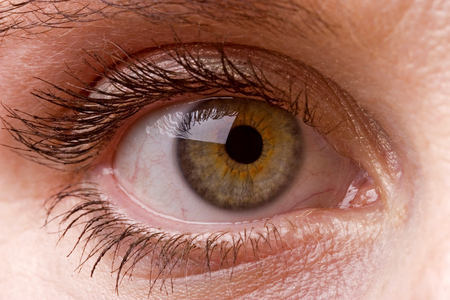 Weibliches einzelnes grünes Auge hautnah Standard-Bild