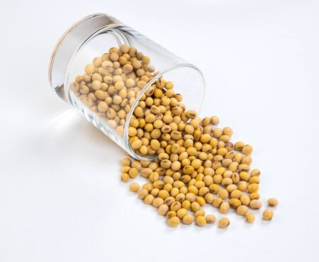 soy beans isolated on white background