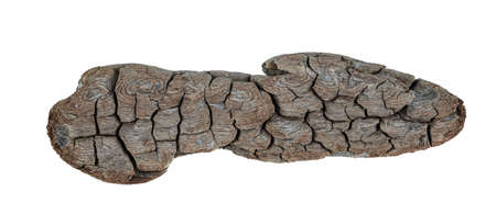 Driftwood texture piece of wood isolated