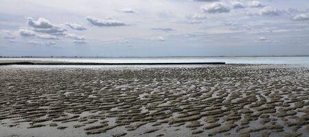 Sea Mud Flat