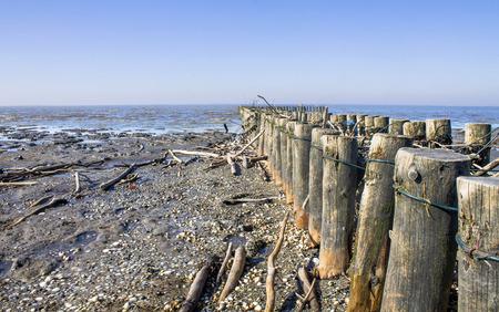 Sea wooden planks