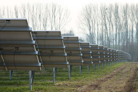 monocrystalline: Park with many panels with solar cells
