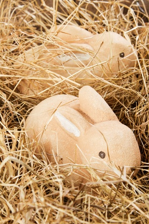 Two brown Easter bunnies in a nest made of hay Stock Photo - 12901006