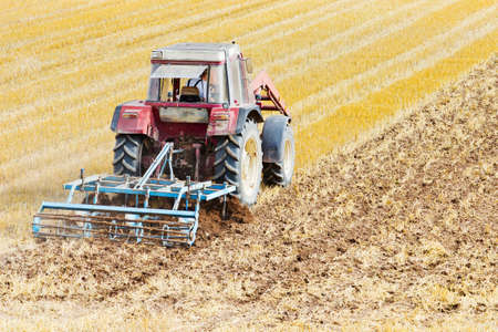 A tractor with a cultivator on a cornfield photo