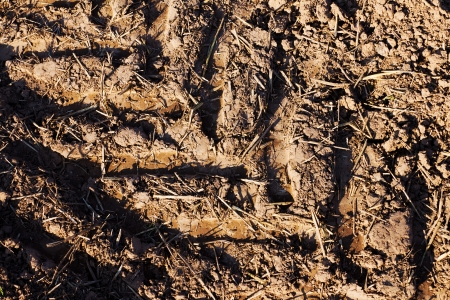 Abstract closeup of the tracks of a tractor in the meadow