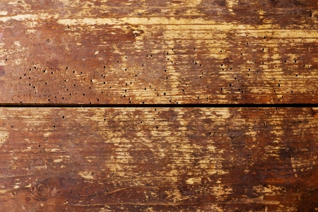Abstract closeup of old weathered wood with grain