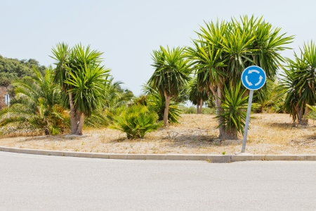 Traffic island of a traffic circle with palms and signs in Spain
