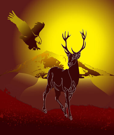 martinet: Deer dans la nature