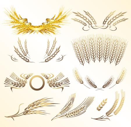 wheat vector Stock Vector - 3656925