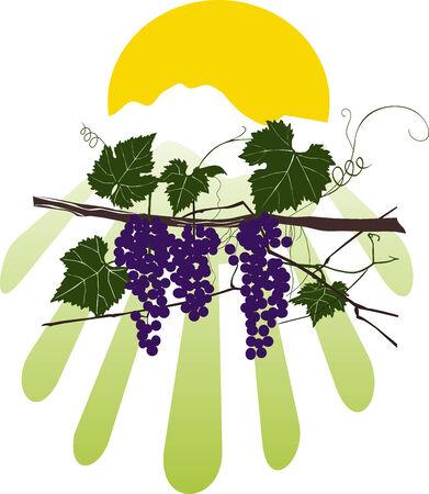 vine style Vector