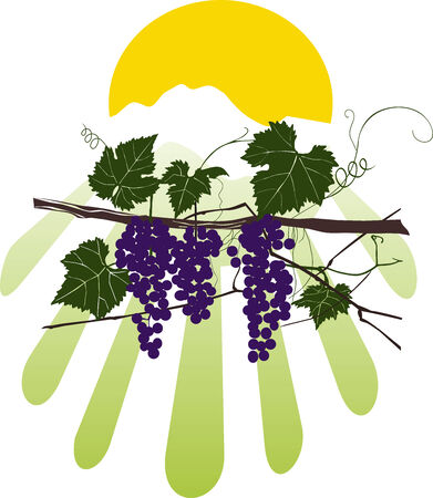 vine style Illustration