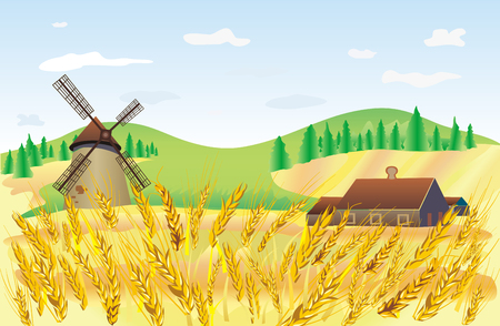 wheat field Stock Vector - 4012641