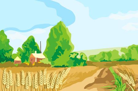 yellow  agriculture: tierra de trigo Vectores