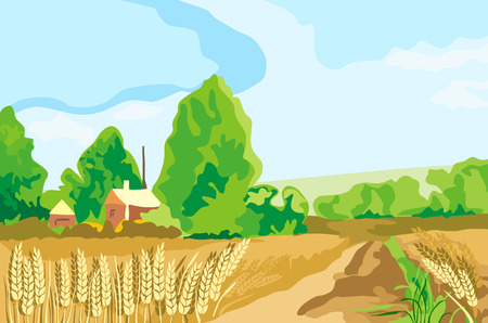 wheat land Illustration