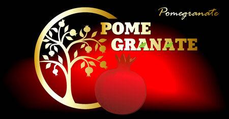 pomegranate juice: Pomegranate Illustration