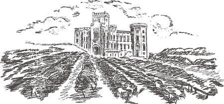 Vintage - vineyard and castle (label design) Stock Vector - 7482006