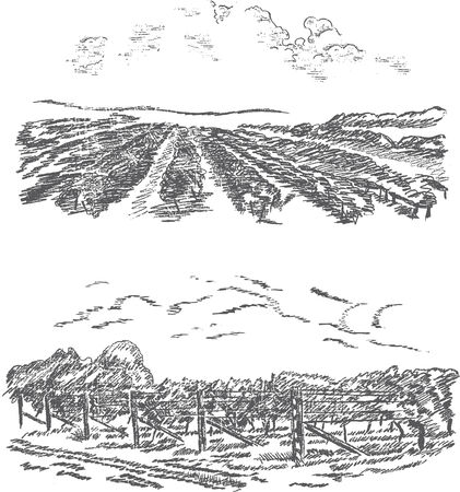 Vintage - vineyard and castle (label design) Stock Vector - 7482007