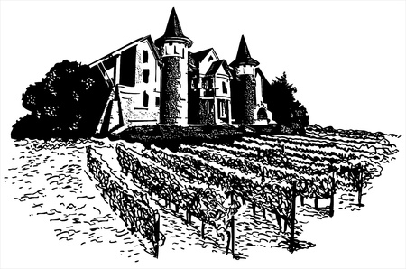 Castle - vineyard  Illustration