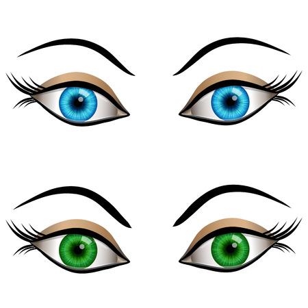 cornea: Set di cartone animato occhi femminili colori blu e verde