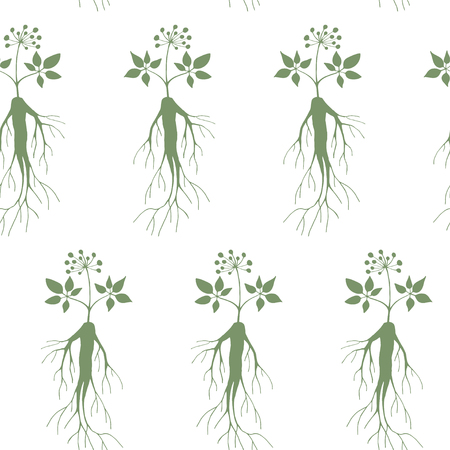 Seamless pattern branches and root of ginseng. Floral background. illustration