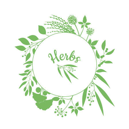 fresh herbs: Fresh herbs store emblem. Green round frame with collection of plants. Silhouette of branches isolated on white background