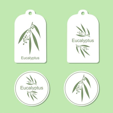 eucalyptus: Silhouette of Eucalyptus with leaves.  Medicinal plant. Vector  Illustration. Health and Nature Set of Tags and Labels