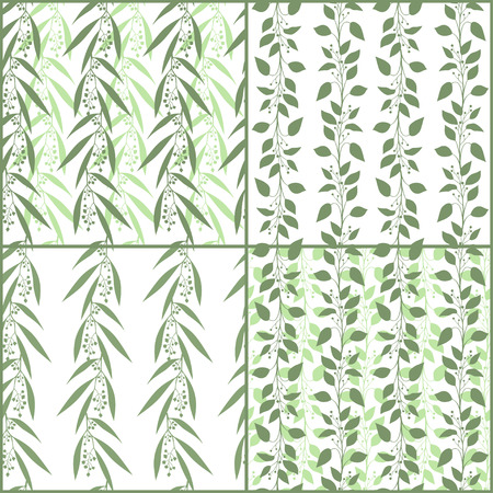 eucalyptus: Set of seamless pattern branches of eucalyptus and Camphor laurel. Vector illustration.  Green floral backgrounds Illustration