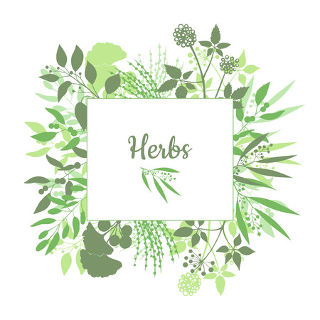 Fresh herbs store emblem. Green square frame with collection of plants. Silhouette of branches isolated on white background Illustration