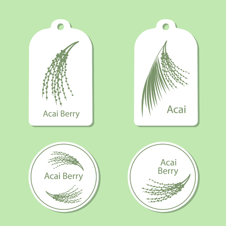 acai: Acai palm leaves and acai berries vector illustration isolated on white background. Superfood acai green silhouette berry. Tags and Labels