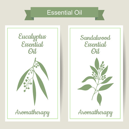Set of 2 labels with Eucalyptus and sandalwood on white background. Aromatherapy. Great for traditional medicine, perfume design or gardening labels.