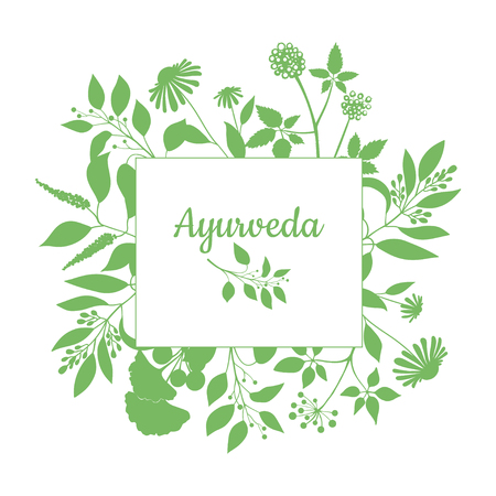fresh herbs: Fresh herbs store emblem. Green square frame with collection ayurveda plants. Silhouette of branches isolated on white background