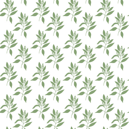 Seamless pattern green leaves of sandalwood . Floral background. Vector illustration. Иллюстрация