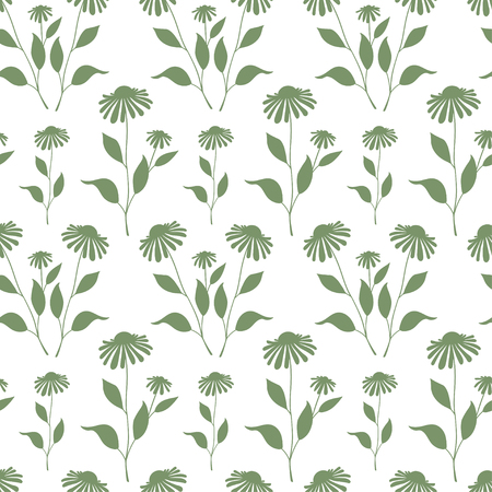 Seamless plant background. Endless pattern with green Echinacea plant silhouette. Illustration