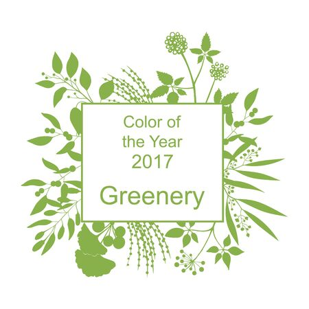 greenery: Color of the year 2017. Greenery trendy background with frame and silhouette of branches isolated on white