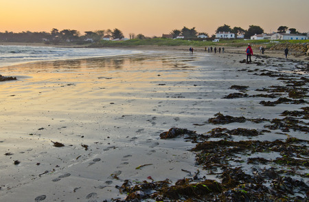 vendee: People walking along sandy cost in north island of Yeu in early morning before sunrise waters of Atlantic Ocean at left and sea algae plants in the sand right at island vegetation ant houses are colored morning sky at background. France Vendee Pay loire Stock Photo