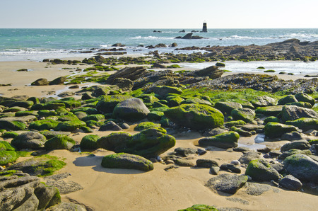 vendee: Its a Rocky coastline in the east of Yeu island with the sand and stones covered with green algae leading to the Turret of Crow Point and Atlantic Ocean horizon.