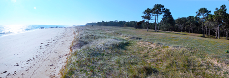 vendee: Panorama of dune coastline in north of Yeu Island. The Atlantic Ocean and sandy beach in sunlight and are right at the forest and dune is at right center is at France Vendee Pay loire Stock Photo