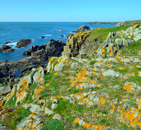 advances: Rocky Coastline of South of Yeu Island covered with green grass and spring flowers. France Vendee Pay loire Stock Photo
