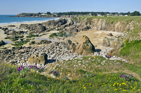 vendee: Rocky Coastline of South of Yeu Island with spring flowers and green plants at foreground and sandy beach houses and lonely island fare at background. France Vendee Pay loire Stock Photo