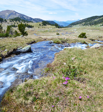 tourism in andorra: The stream of Perafita river flows from the top of MadriuPerafitaClaror Valley in Andorran Pyrenees. Futher in the meadow it collects other water streams. UNESCO World Heritage Site