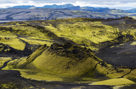 First Craters of Southwestern Part of Lakagigar Volcanic Crack from Laki Volcano in South of Iceland. Green-yellow colored Icelandic contrasted moss with black volcanic lava rocks.