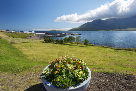 Stodvarfjordur village and Stodvar Fjord view in Eastern Iceland. Flowers planted in the concrete bowl are at foreground. 写真素材 - 125486759