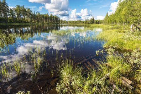 Landscape of the marshland along Soralven river in Dalarna county of Sweden. 写真素材