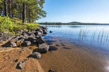 The landscape of Siebdniesjavrrie lake coastline in Swedish Lapland. Sandy beach with stones is at foreground, the pine forest is at right. Vasterbotten county, Norrland, Sweden. 写真素材