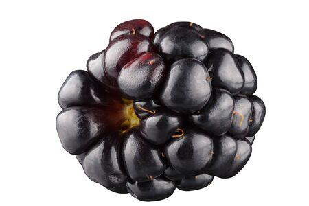blackberry isolated on the white background . Stok Fotoğraf