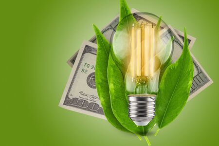 Energy saving concept. LED light bulb with dollars on a green background. Green leaves of a plant in the background.