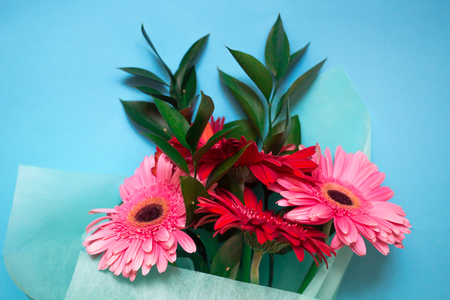 bouquet of pink and red gerberas on a blue background Banco de Imagens