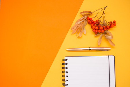 autumn minimalistic Flat lay, red orange colors, Notepad with space for text, pen, Rowan twig