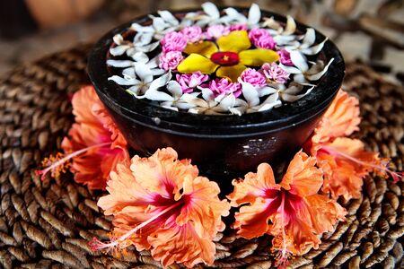 flores exoticas: Flores ex�ticas para la relajaci�n